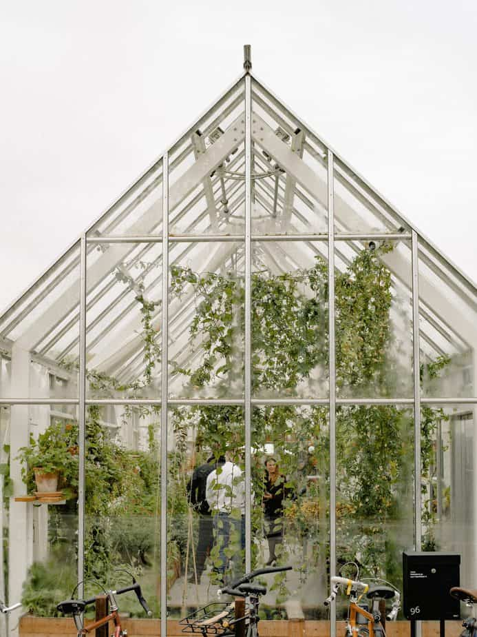 The Ultimate Greenhouse Guide