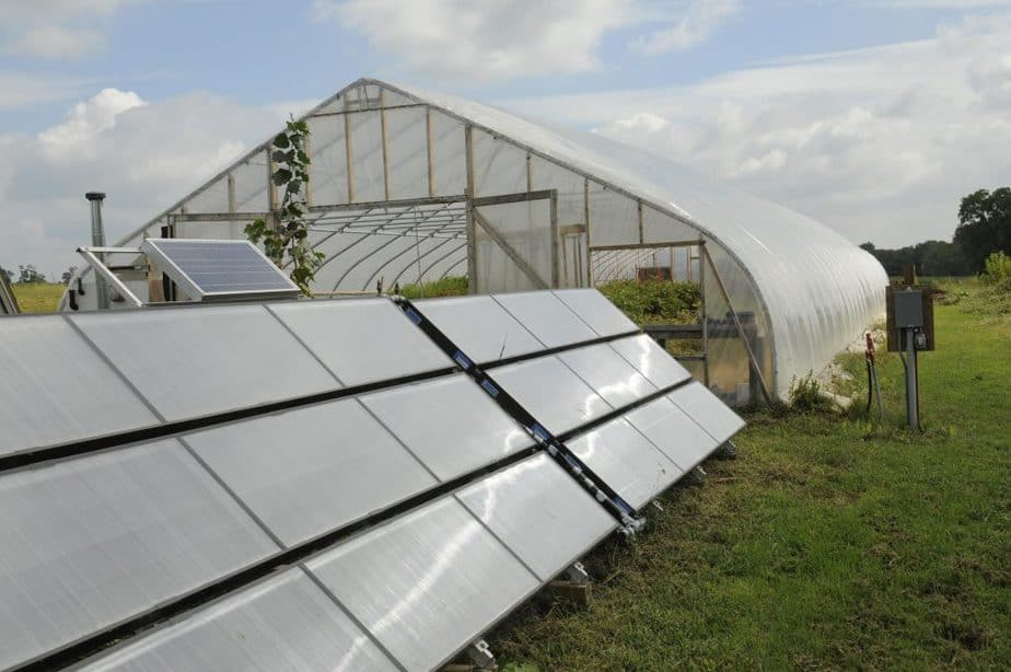 Solar Panel Placement for Greenhouses