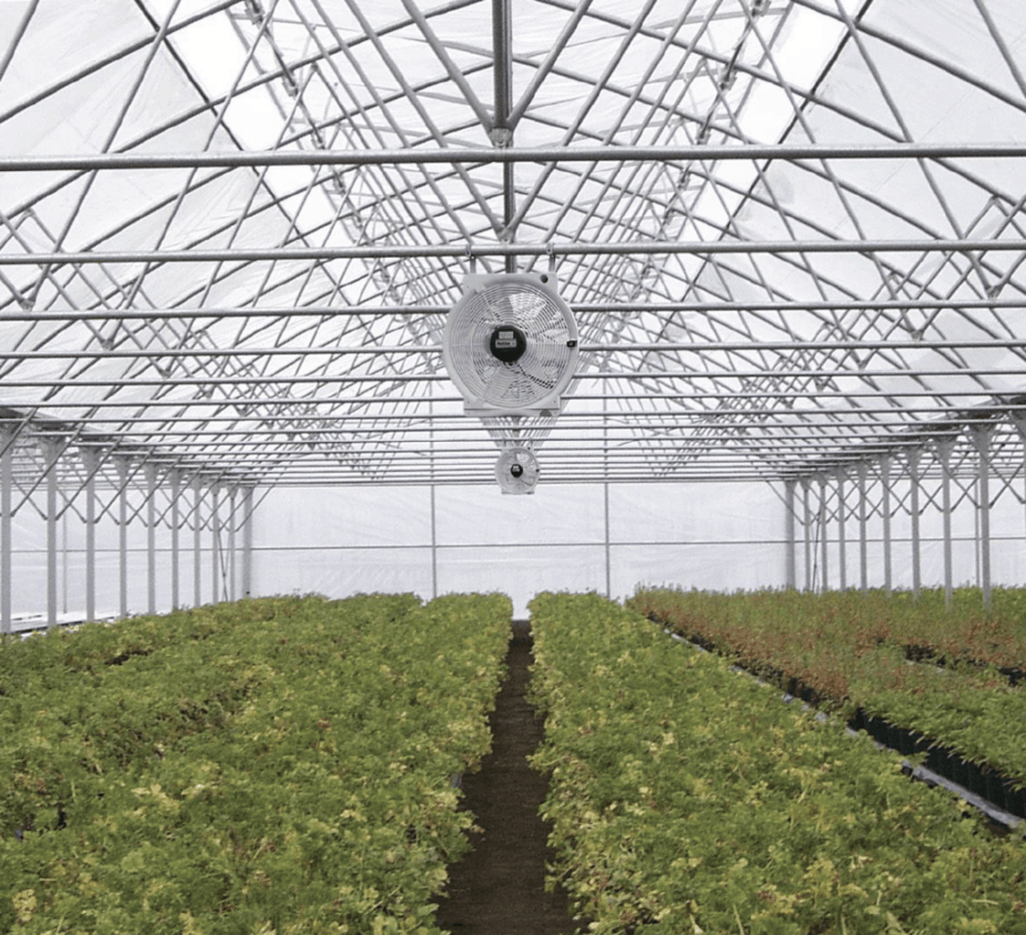 ventilating your greenhouse