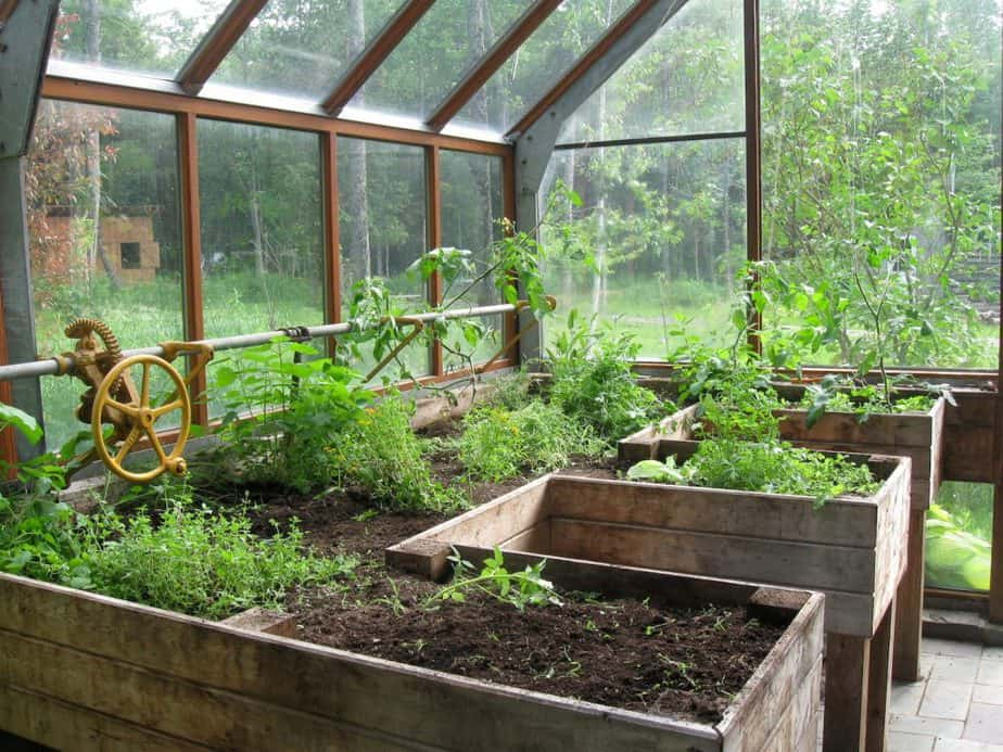 Best Materials for Greenhouse Panes