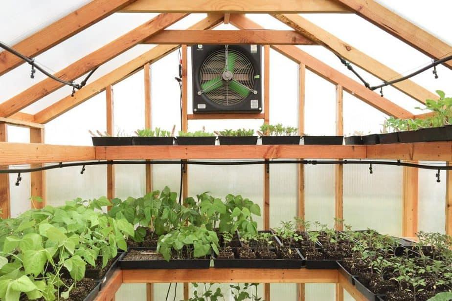 airflow greenhouse