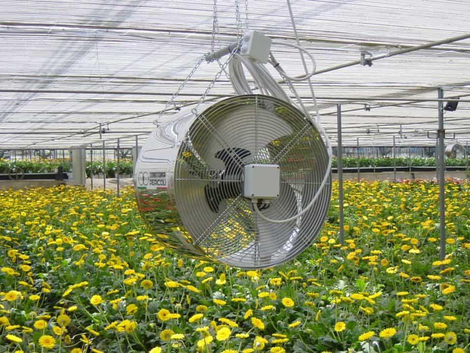 Proper greenhouse ventilation
