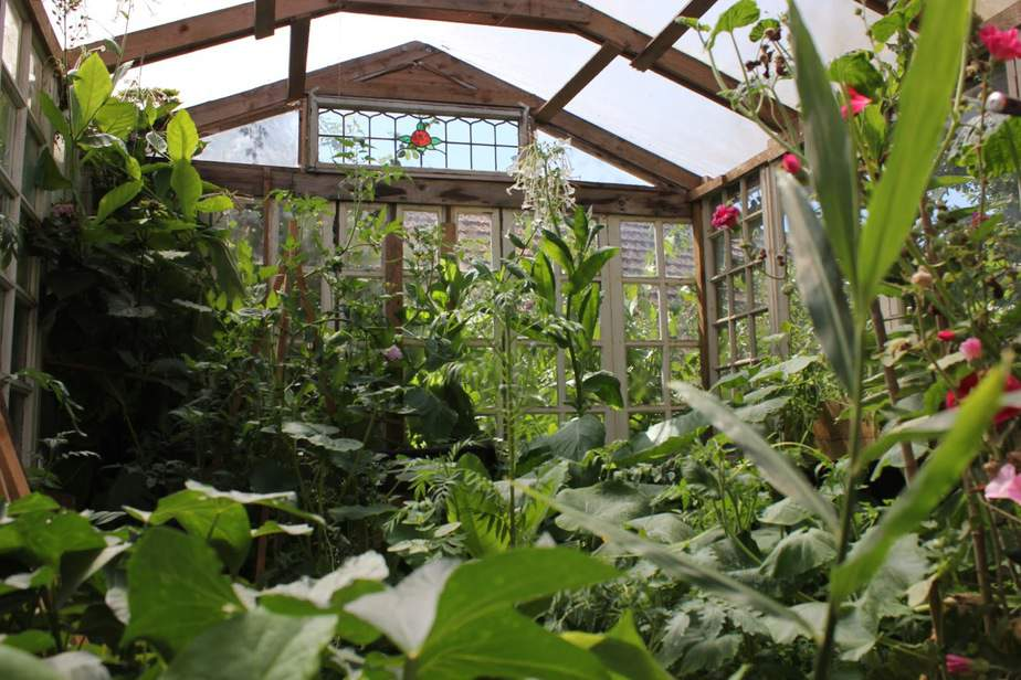 You are currently viewing How Much Does A Greenhouse Cost?