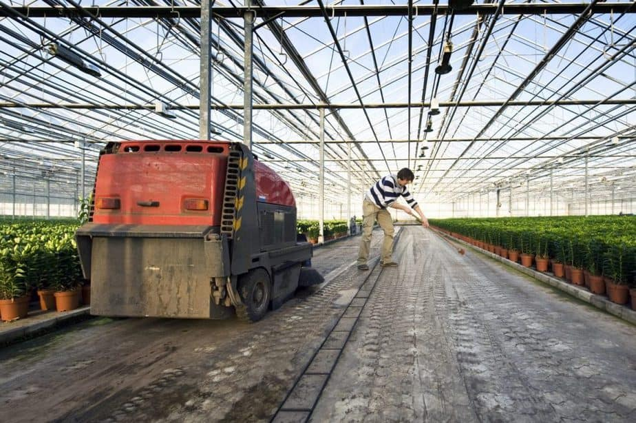Greenhouse cleaning