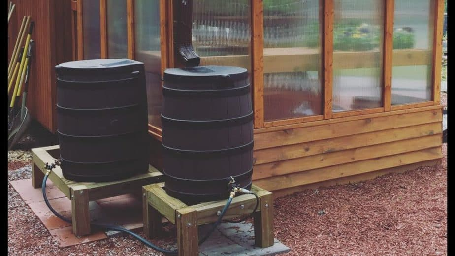 greenhouse rain barrels