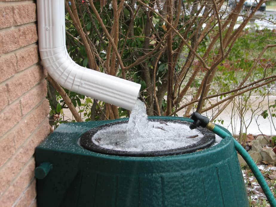 Greenhouse Rain Collection Guide: Using Rain Barrels