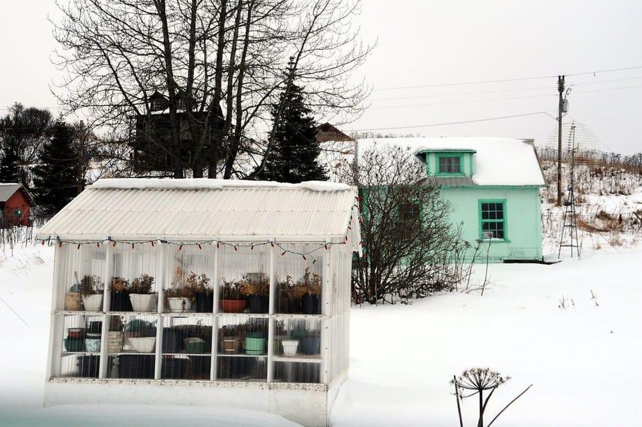 disadvantages to a backyard greenhouse