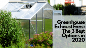 Greenhouse Exhaust Fans: The 3 Best Options in 2020