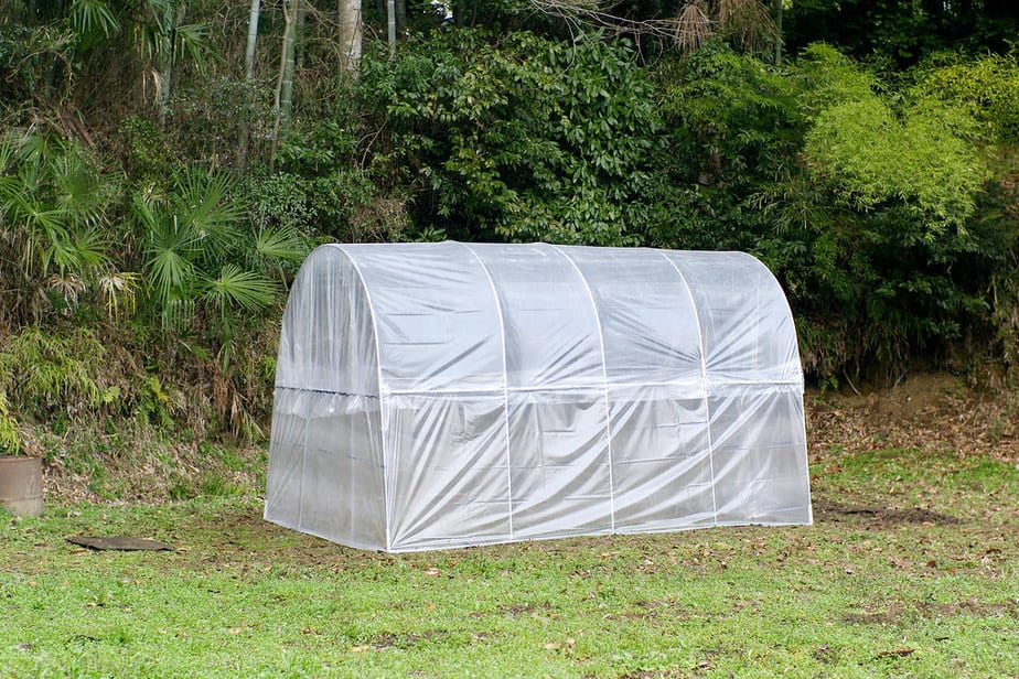 inexpensive diy greenhouse