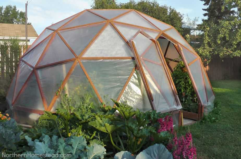 Can I Build My Own DIY Greenhouse?