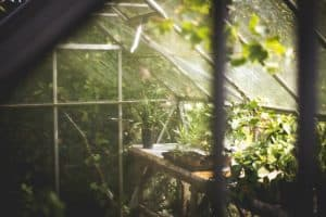 A Quick Guide to Greenhouse Misting Systems