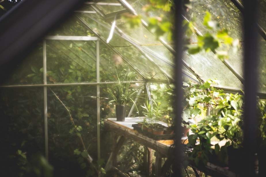 You are currently viewing A Quick Guide to Greenhouse Misting Systems