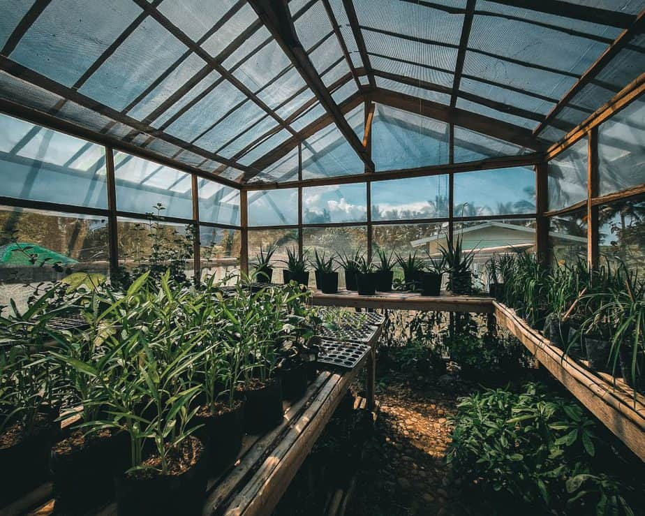 how to heat a greenhouse in winter with no electricity