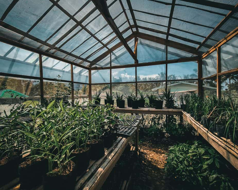 How to Keep Your Greenhouse Warm Without Electricity