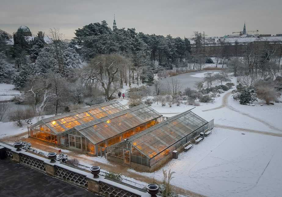 How to Get Your Greenhouse Ready for Winter