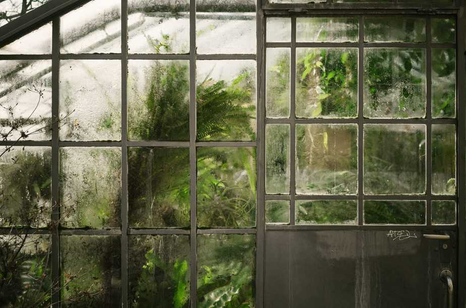 How to Grow a Winter Greenhouse