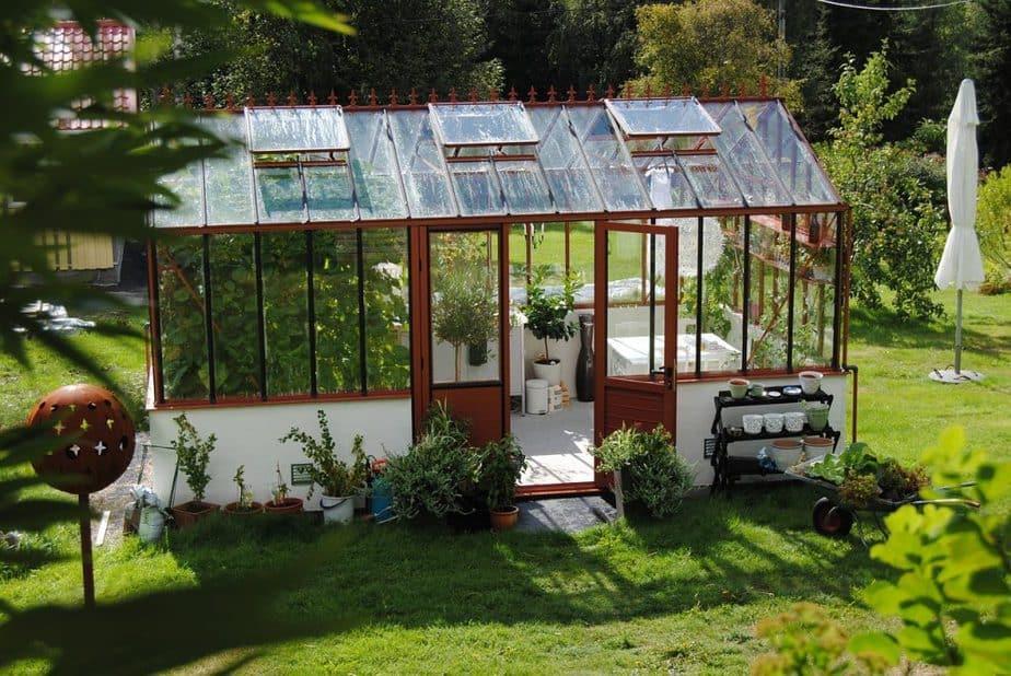 greenhouse, summer, grow