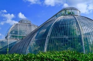 Gothic arch greenhouse type