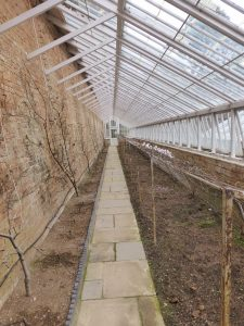 lean-to greenhouse type