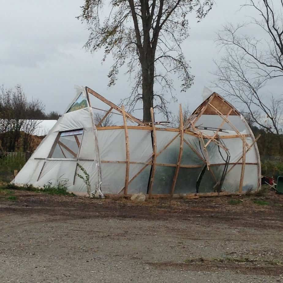 Preparing Your Greenhouse for Windy Weather