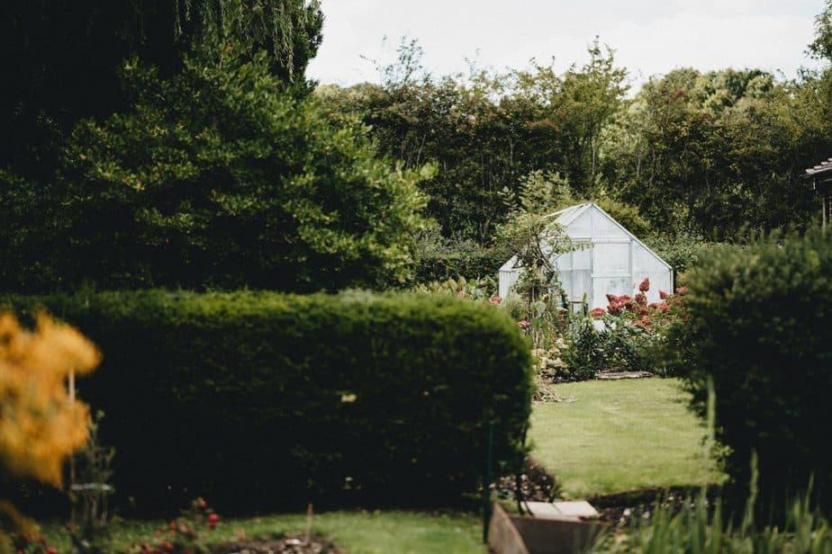 The 3 Best 8x16 Greenhouse Kits