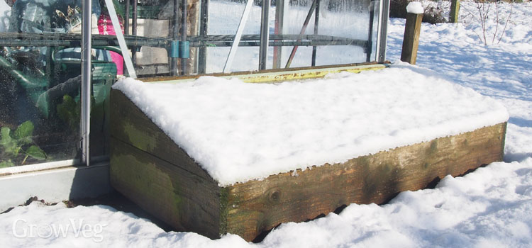 What Temperatures Should a Cold Frame Greenhouse Reach?
