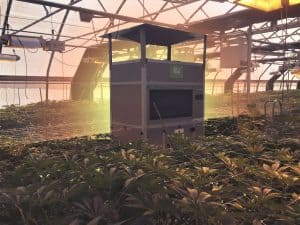 The 3 Best Dehumidifiers for Greenhouses