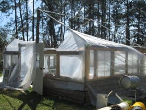 Do You Need a Reinforced Greenhouse?