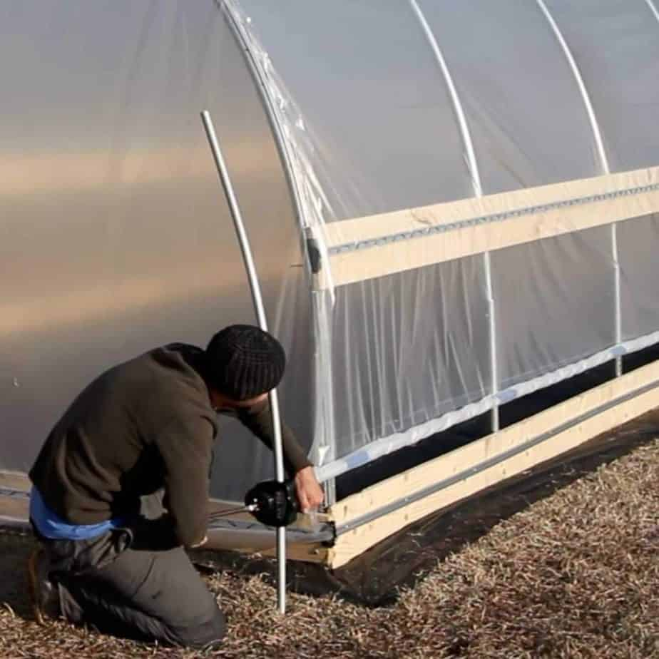 Best Clear Plastic Sheets for Greenhouses year round