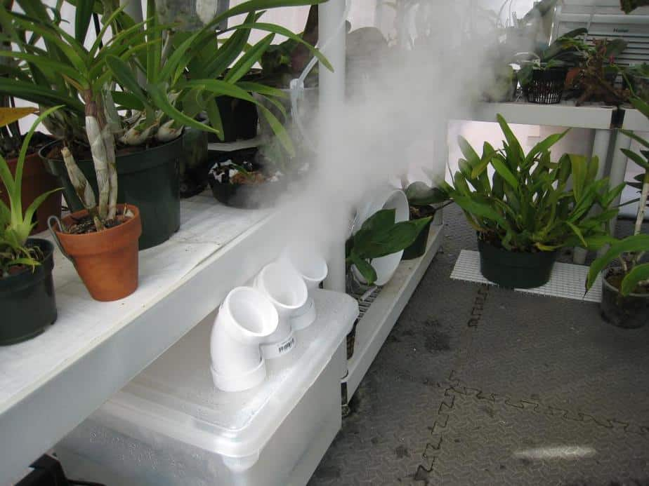 How to Choose the Best Greenhouse Humidifier