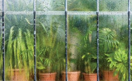 greenhouse too humid best dehumidifiers for greenhouses