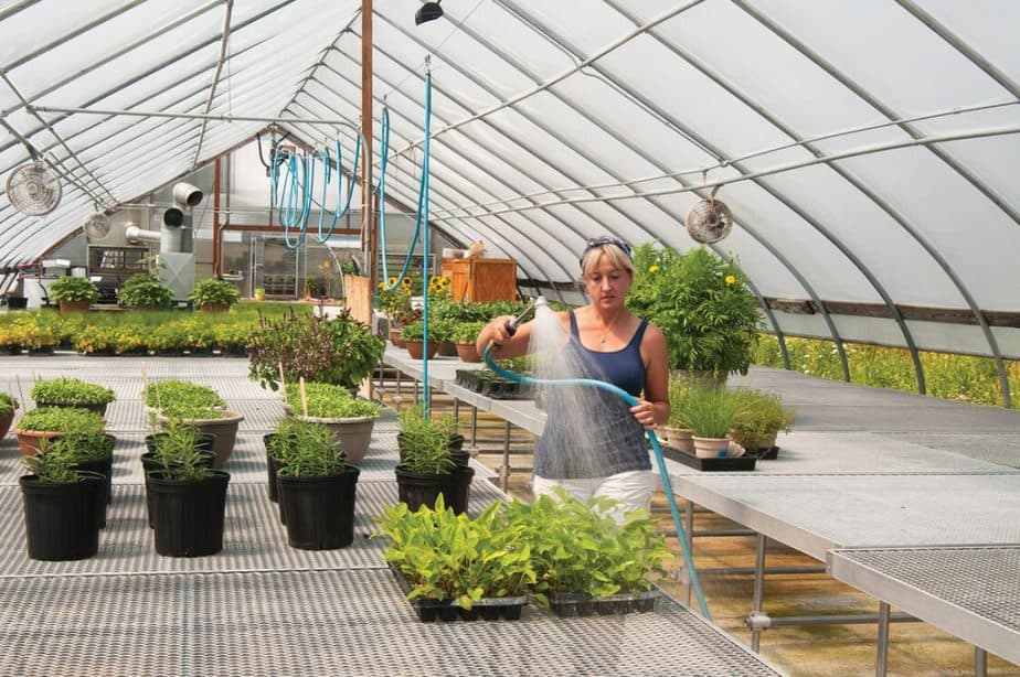 The Best Hoses for Greenhouses