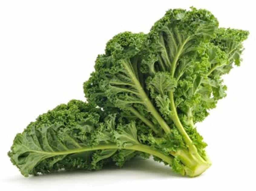 Kale seeds for planting