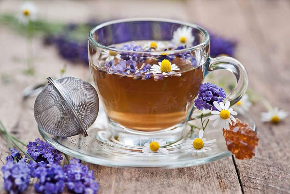 english lavender seeds for planting