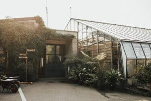 Where to Build Your Greenhouse