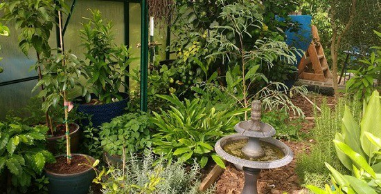greenhouse microclimate