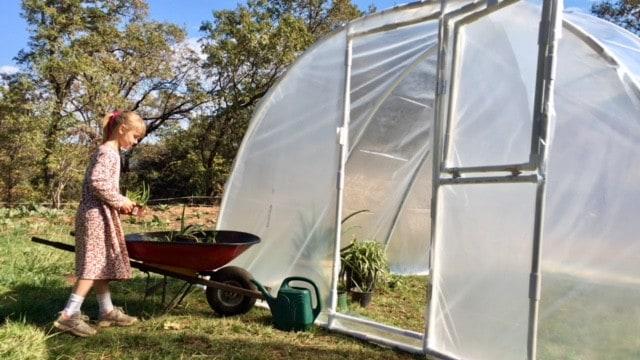 buying pvc greenhouse kit tips