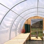 Should You Choose A Glass or Plastic Greenhouse?