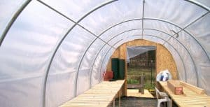 Read more about the article Should You Choose A Glass or Plastic Greenhouse?