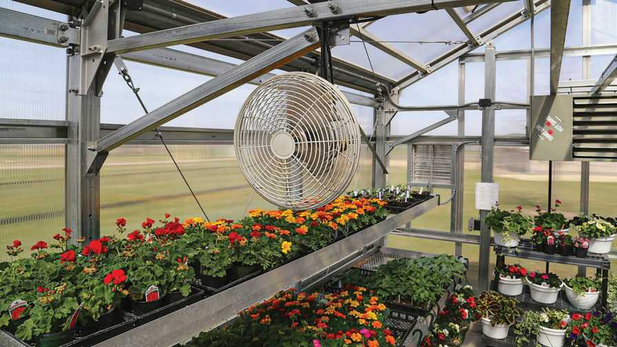 greenhouse Ventilation tips