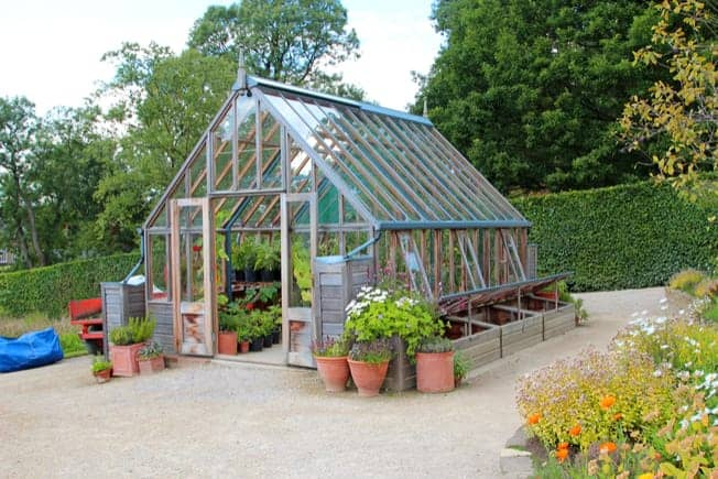 Best Greenhouses for Renters