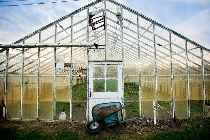 Greenhouse Upkeep
