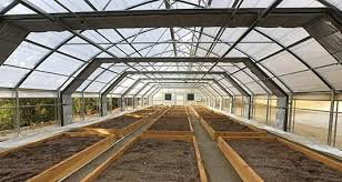 Automated Light Deprivation Systems for greenhouses