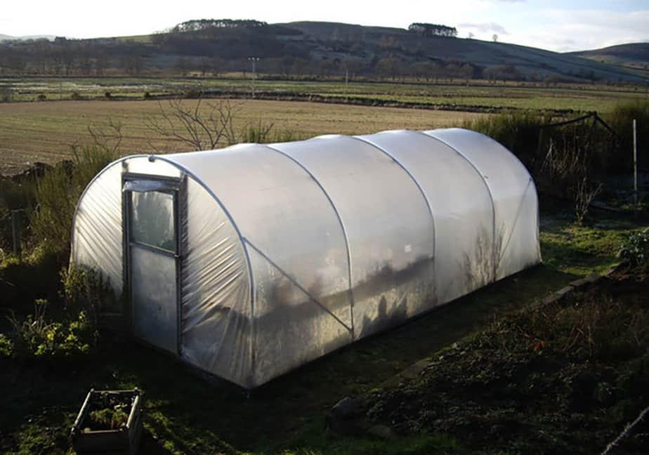 Greenhouse Light Deprivation Tips
