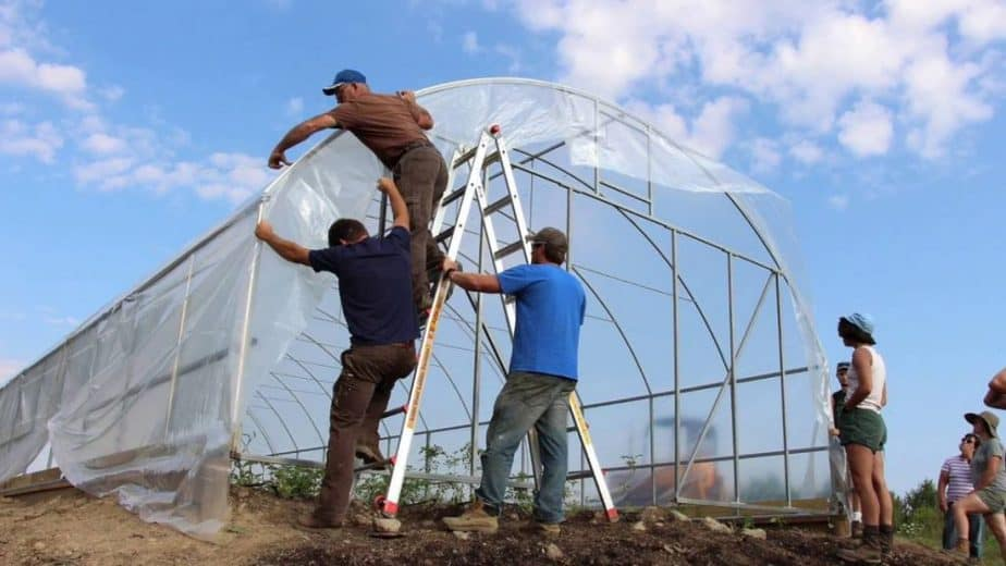 greenhouse plastic Installation and Maintenance