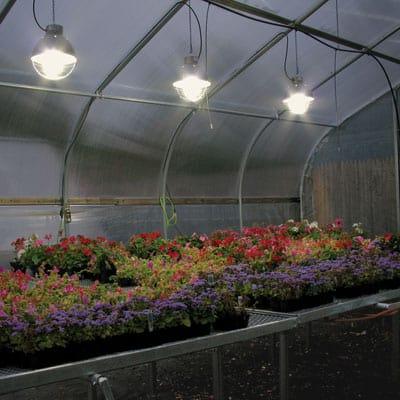 Fluorescent light greenhouse