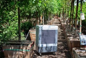 Read more about the article Guide to Evaporative Coolers in Greenhouses