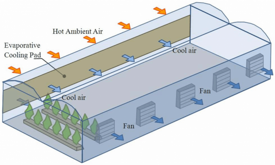Greenhouse Evaporative Cooling tips