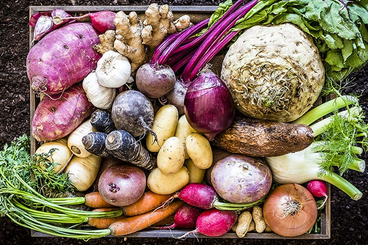 root vegetables for greenhouses winter