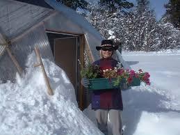 flower greenhouse winter